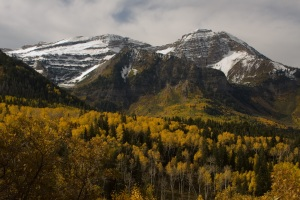 Fall colors in American Fork Canyon